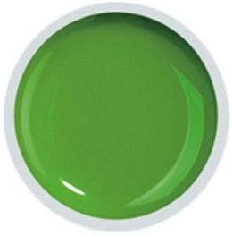 Fengshangmei Cover Color Gel - GS067 - Grass Green