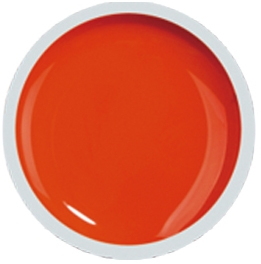 Fengshangmei Cover Color Gel - GS042 - Orange