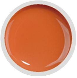 Fengshangmei Cover Color Gel - GS017 - Mango