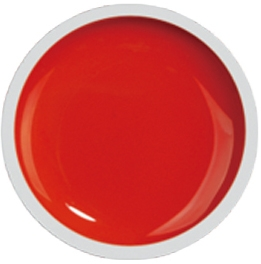 Fengshangmei Cover Color Gel - GS027 - Light Red