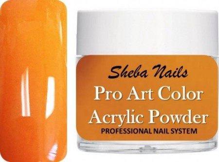 Pro Art Color Acrylic Powder - Squash