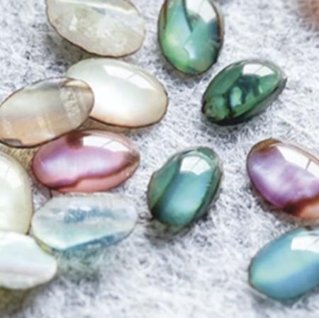 Abalone Shell Stone