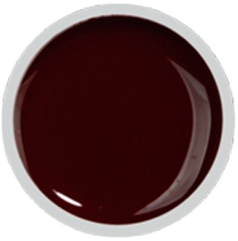 Fengshangmei Cover Color Gel - GS030 - Red Brown