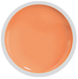 Fengshangmei Cover Color Gel - GS069 - Pink Orange