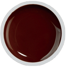 Fengshangmei Cover Color Gel - GS025 - Brown