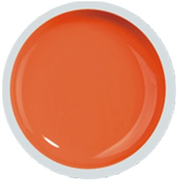Fengshangmei Cover Color Gel - GS045 - Orange Yellow