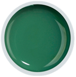 Fengshangmei Cover Color Gel - GS060 - Gray Green