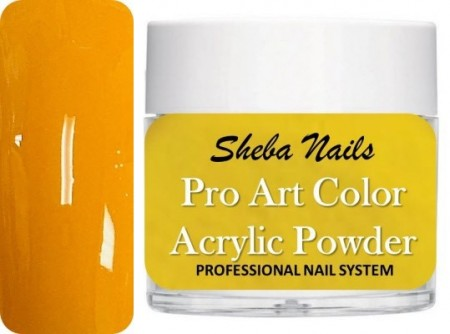 Pro Art Color Acrylic Powder - Amber