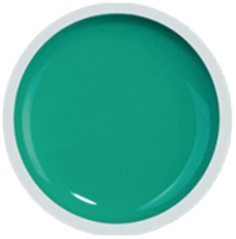Fengshangmei Cover Color Gel - GS058 - Mint